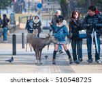nara  japan   feb 8  2015 ... | Shutterstock . vector #510548725