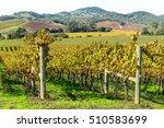 napa valley california vineyard | Shutterstock . vector #510583699