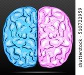 left and right hemisphere of... | Shutterstock .eps vector #510722959