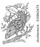 toucan bird coloring book for...   Shutterstock . vector #510862675