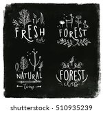 forest labels lettering forest  ... | Shutterstock .eps vector #510935239