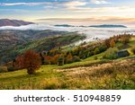 cold morning fog with golden hot sunrise in the rural area of Carpathian mountain range. green grass and trees with colorful foliage on the hillside meadow - stock photo