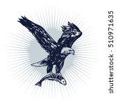 fly eagle vector illustration.