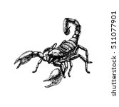 hand drawn sketch of scorpion.... | Shutterstock .eps vector #511077901