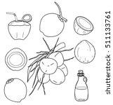 vector coconut hand drawn... | Shutterstock .eps vector #511133761