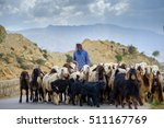 Shepherd Drives On The Mountai...