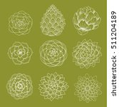 set of doodle succulents and... | Shutterstock .eps vector #511204189