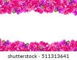 Bougainvillea Beautiful Flower...