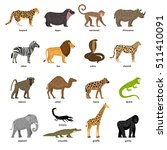 lovely set of african animals | Shutterstock .eps vector #511410091