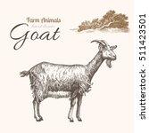 Goat 2. Animal Husbandry. Goat...