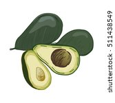 avocado vector  illustration.... | Shutterstock .eps vector #511438549