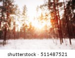 Abstract Winter Natural Blurre...