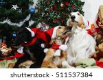 christmas greetings from two...   Shutterstock . vector #511537384