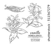 vanilla  vector set on white... | Shutterstock .eps vector #511567279