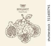 background with bergamotand... | Shutterstock .eps vector #511600741