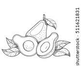 avocado fruit logo. halves of... | Shutterstock .eps vector #511621831