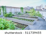 agriculture in urban on rooftop | Shutterstock . vector #511739455