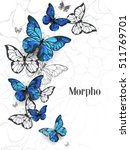 Flying Blue Butterflies Morpho...