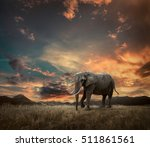 elephant with trunks and big... | Shutterstock . vector #511861561