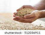 agriculture  farming ...   Shutterstock . vector #512036911