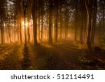 magic forest with sun light... | Shutterstock . vector #512114491