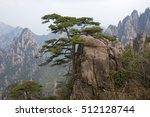 Lonely Pine Tree On Rocks Top...