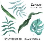 flowers and leaves  isolated ... | Shutterstock . vector #512190511