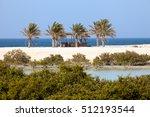 Mangroves and palm trees on Sir Bani Yas island, UAE