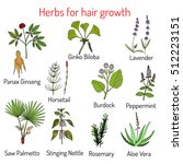natural hair care  herbs for... | Shutterstock .eps vector #512223151