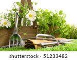 Fresh Herbs In Wooden Box With...