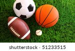 assortment of sport balls on... | Shutterstock . vector #51233515