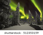 Small photo of Winter night landscape with forest and polar northern lights america landscape america landscape america landscape america landscape america landscape america landscape america landscape america