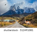 chile  patagonia  torres del... | Shutterstock . vector #512491081