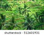 padi terrace  bali  indonesia   ... | Shutterstock . vector #512601931