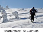Backcountry Skiers Touring In...