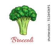 broccoli. vector isolated... | Shutterstock .eps vector #512643691