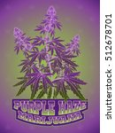 marijuana cannabis purple haze... | Shutterstock .eps vector #512678701