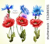 Poppy Flowers And Cornflowers...