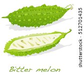 Bitter Melon Vector Isolated O...
