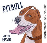pitbull vector illustration.... | Shutterstock .eps vector #512728609