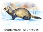 Ferret In The Snow. Winter....