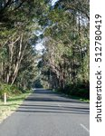 road  | Shutterstock . vector #512780419