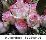 rose | Shutterstock . vector #512840401