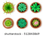 plants icon set top view with... | Shutterstock .eps vector #512843869