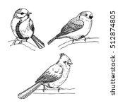 birds cardinal  bullfinch ... | Shutterstock .eps vector #512874805