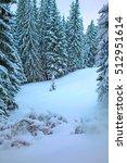 Winter Mountain Forest. Fir...