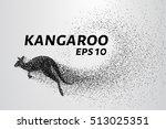 kangaroo of particles. kangaroo ... | Shutterstock .eps vector #513025351
