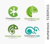 chameleon logo design template. ... | Shutterstock .eps vector #513034111