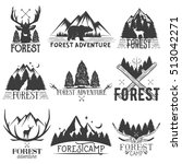 set of forest theme emblems.... | Shutterstock . vector #513042271