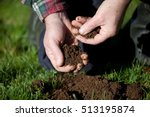 testing the soil on old pasture. | Shutterstock . vector #513195874